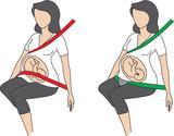 cinturon-seguridad-embarazada homologado